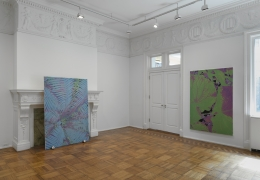 Luca Dellaverson: MYSTIC STYLEZ Installation View