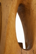 Paul de Ghellinck's wooden sculpture detailed view of wood