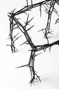 Michele Oka Doner's Terrible Chair, detailed view of thorns on seat and legs
