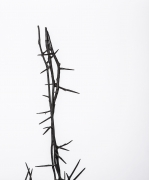 Michele Oka Doner's Terrible Chair, detailed view of thorns