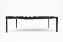 Anne Barrès' coffee table eye level view