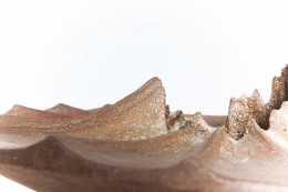 Annie Fourmanoir's ceramic bowl detailed view of edges