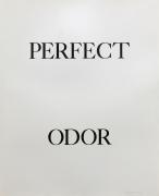 Bruce Nauman Perfect Odor, 1973 Lithograph (triptych), ed. 50