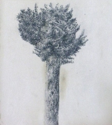 Arboretum, Piece 7