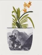 Jonas Wood  Untitled, 2014  Lithograph, silkscreen