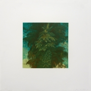 Joan Nelson Untitled, 1990 Lithograph, silkscreen varnish