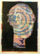 Jason Meadows Hybrids, 2004 Lithographic Monoprint, silkscreen, ed. 131, no. 127 30 x 22 in.
