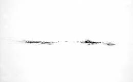 Dimitri Kozyrev, New Drawings 7
