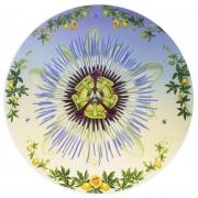 ALONSA GUEVARA Call of the Passion Flower, 2021 Anna Zorina Gallery