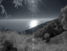 Lou Reed: Romanticism