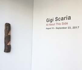 Gigi Scaria | All About This Side