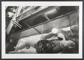 Zoe Leonard Wax Anatomical Model Shot Crooked from Above