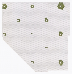 Julia Fish, First plan for floor [ floret ] — section one