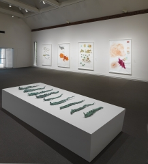 Drawing Redefined: Roni Horn, Esther Kläs, Joëlle Tuerlinckx, Richard Tuttle, and Jorinde Voigt,