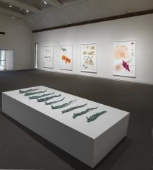 Drawing Redefined: Roni Horn, Esther Kläs, Joëlle Tuerlinckx, Richard Tuttle, and Jorinde Voigt,