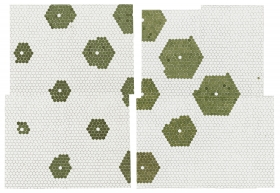 Julia Fish, First plan for floor [ floret ] — section three and six, 1998