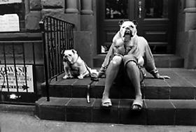 Elliott Erwitt Interview