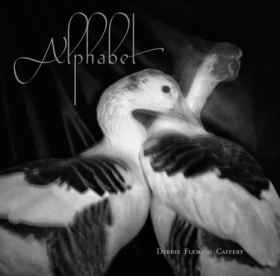Debbie Fleming Caffery : Alphabet