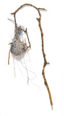 "David Morrison's ""Bird Nests"" series exhibiting at Carnegie Mellon University in"