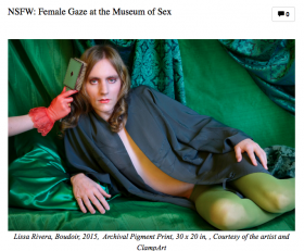 NSFW: Female Gaze at the Museum of Sex Featuring Rebecca Goyette and Sophia Narrett
