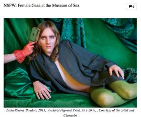 NSFW: Female Gaze at the Museum of Sex Featuring Rebecca Goyette and Sophia Narrett