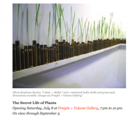 """The Secret Life of Plants"" makes Bedford+Bowery's ""Art Heart"" List"