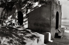 Raghu Rai Doggy under Shadow, Rajasthan Edition of 10 1972 Digital scan of photographic negative on archival paper 20 x 30 in.