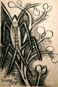 F.N. Souza  Untitled (Grasshopper in Foliage)  1952  Charcoal on paper  22 x 15 in.