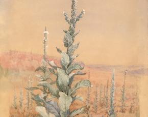 Artist Fiedlia Bridges 1834-1923.