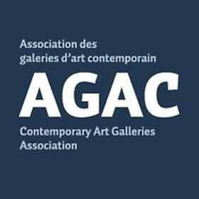 PATRICK MIKHAIL ÉLU AU CONSEIL D'ADMINISTRATION DE L'ASSOCIATION DES GALERIES D'ART CONTEMPORAIN / CONTEMPORARY ART GALLERIES ASSOCIATION