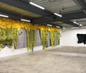 Installation view of Borinquen Gallo hanging work