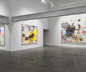Installation view of Oliver Lee Jackson: Take the House