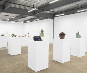 Installation view, 'Valerie Hegarty: American Berserk', Minnesota Street Project, San Francisco, 2018