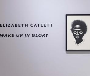 Elizabeth Catlett installation wall text