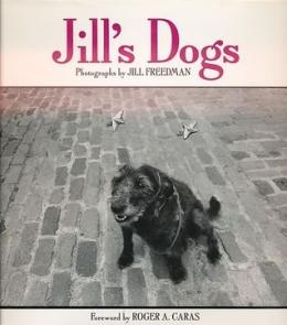 Jill's Dogs by Jill Freedman