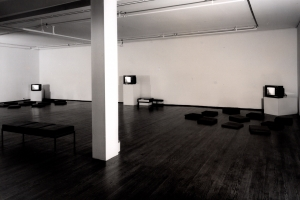 Group Video Exhibition  (A Castelli-Sonnabend Videotapes and Film exhibition)