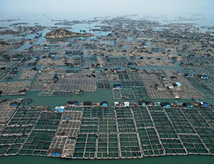 Recent Press for Edward Burtynsky: Water