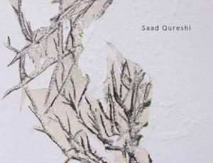 In the Remains | Recent Work by Saad Qureshi