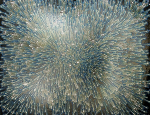 In Conversation: Barbara Takenaga