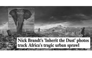 Nick Brandt in The LA Times