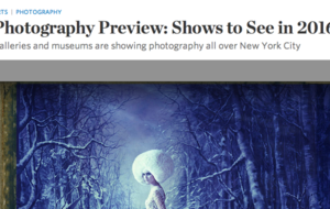 "Cathleen Naundorf named ""Show to See in 2016"" by The Wall Street Journal"