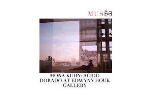 Musee Magazine covers the opening of Mona Kuhn: Acido Dorado