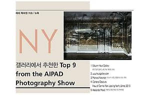 Edwynn Houk Gallery included in Top 9 of AIPAD by SajinYesul Photographic Art Magazine