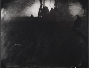 The Mournful, Magnificent Sally Mann
