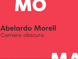 Abelardo Morell Interview with SFMOMA