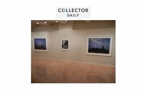 Collector Daily on Abelardo Morell