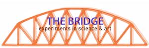 Shanthi Chandrasekar Selected for SciArt Initiative's 2020 Bridge Science Art Residency
