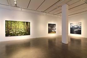 "Huffington Post ""April Gornik: Recent Paintings and Drawings at Danese/Corey"""