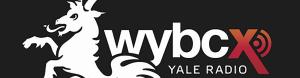 Interviews from Yale University Radio WYBCX: Judy Glantzman