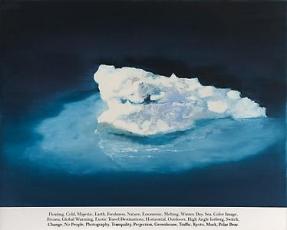 Rob Reynolds at David Winton Bell Gallery